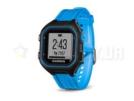 Спортивные часы Garmin Forerunner 25 Black/Blue Large (010-01353-11)